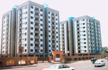 Buildings of SAIP, PWD
